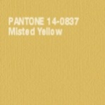 Misted Yellow