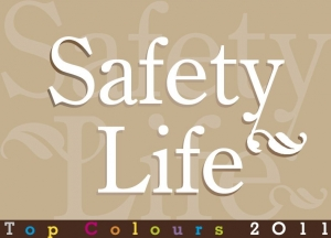 safety life