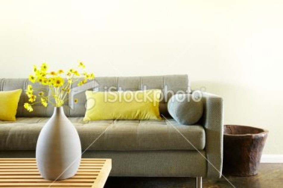 stock-photo-17839809-empty-modern-living-room-from-low-angle